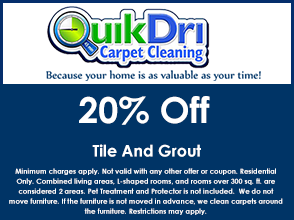 Tile and Grout coupon for 20% off.